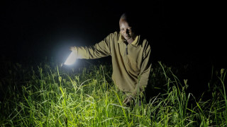 Farmer inspecting crops by light at night